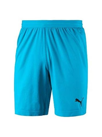 Вратарские шорты PUMA FINAL evoKNIT GK Shorts (SS18) 70345508