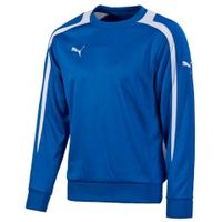 Кофта PUMA POWERCAT TT 1.12 SWEAT (SS12)